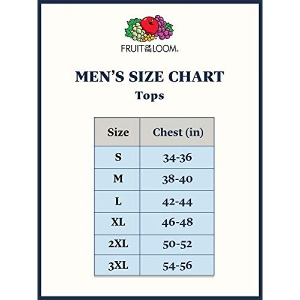Fruit of the Loom Graphic Tshirt 3 Men's Stay Tucked V-Neck T-Shirt