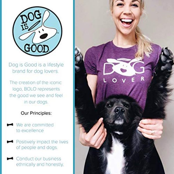Dog is Good Graphic Tshirt 5 Short Sleeve T-Shirt Welcome Diversity - Great Gift for Dog Lovers, Made with High Premium Materials, Women's Fit