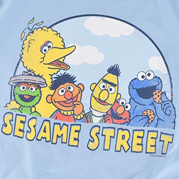 Popfunk Graphic Tshirt 5 Sesame Street Group T Shirt & Stickers