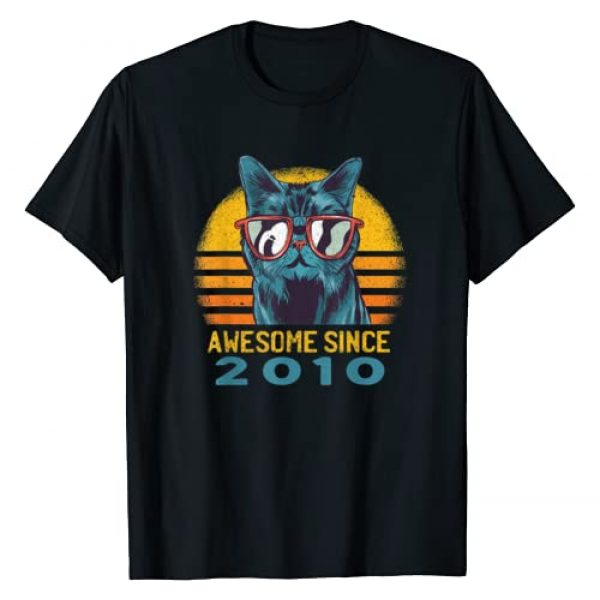 Awesome Since 2010 10th birthday gifts Tee Co. Graphic Tshirt 1 Vintage Best Cool Cat Awesome Since 2010 T-Shirt