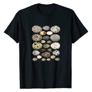 Collection Eggs Graphic Tshirt 1 Collection of different eggs of different species of birds T-Shirt